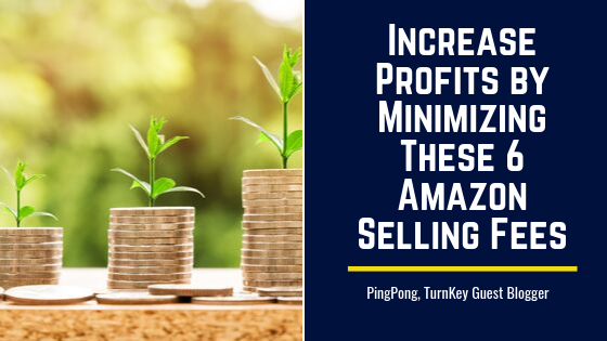 Increase Profits by Minimizing These 6 Amazon Selling Fees