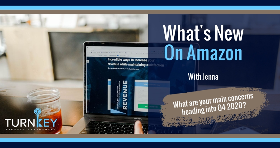 What's New on Amazon: What are your main concerns heading into Q4 2020?
